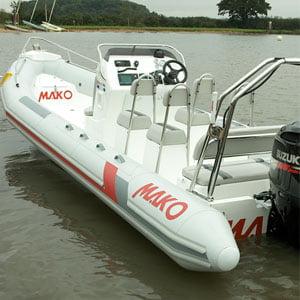 rib1-300